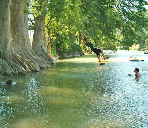 Tree Swing Over The Guadalupe River